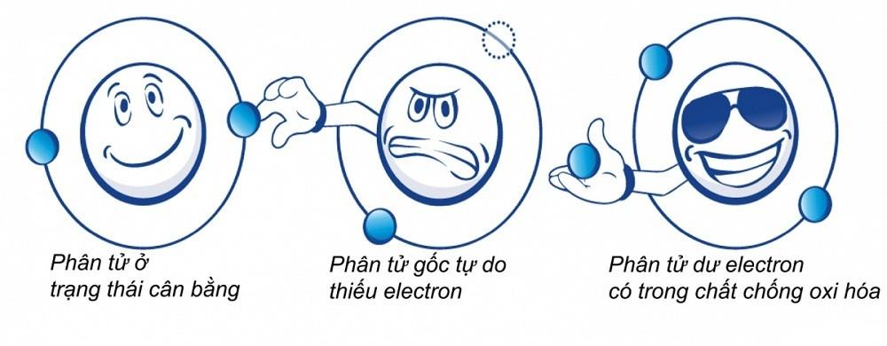 Đặc tính chống oxy hóa của nước ion kiềm