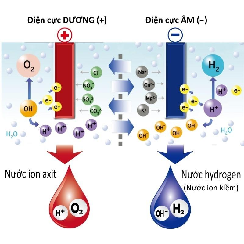 Quy trình tạo nước ion kiềm và ion axit của máy tạo nước ion kiềm